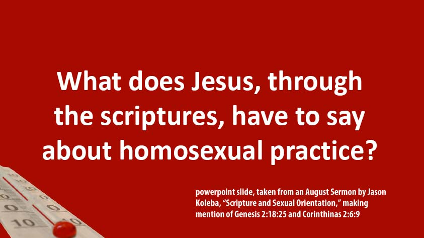 "Powerpoint slide by Jason Koleba, ""What does Jesus, through the scriptures, have to say about homosexual practice?"""